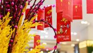 Người dân châu Á thường làm gì dịp Tết cổ truyền để mong may mắn cả năm?