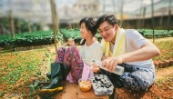 Mê tít bộ ảnh cưới bình dị của đôi vợ chồng theo phong cách nông dân Hàn Quốc