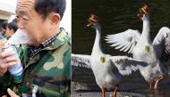 """Những điều """"kì quặc"""" kể không hết chỉ có ở Trung Quốc"""