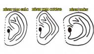 Học cách nhìn người cực chuẩn xác qua hình dáng đôi tai của người xưa