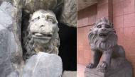 """Cười """"rụng nụ"""" với bộ sưu tập sư tử """"ngáo đá"""" nhất hệ mặt trời"""