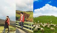 """Cảnh đẹp có một không hai ở trang trại cừu mà Trường """"híp"""" dẫn bạn gái đến sống ảo"""