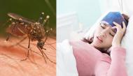 Dấu hiệu giúp phân biệt sốt xuất huyết và sốt rét mà nhiều người hay nhầm lẫn