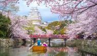 3 địa điểm lí tưởng để ngắm hoa anh đào khi đến Nhật Bản