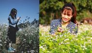 Giới trẻ rủ nhau đến phố núi Pleiku check-in hoa tam giác mạch đang khoe sắc rực rỡ đẹp nức lòng