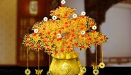 Trưng những loại hoa này trong ngày Tết thì bảo đảm may mắn tài lộc cứ ào ào vào nhà