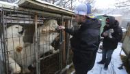 Hành động bất ngờ của vận động viên người Mỹ sau khi tận mắt chứng kiến trại giết chó ở Hàn