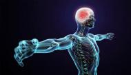 Những điều thú vị chứng minh cơ thể con người là cỗ máy hoàn hảo nhất