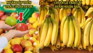 """Sự thật về những thực phẩm quen thuộc khiến ai nấy biết đều """"ngớ người"""""""