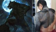 """""""Dung nhan"""" đời thực của các sinh vật huyền bí tưởng chỉ có trong truyền thuyết"""