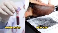 6 bí ẩn về cơ thể khiến các nhà khoa học đau đầu tìm lời giải đáp