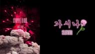 """Lợi ích của việc làm fan Kpop: """"Cày"""" MV của thần tượng thu được cả 1001 bí quyết giảm cân"""