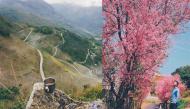 Bạn đã từng đi qua những con đường được dân phượt khen là đẹp nhất Việt Nam chưa?