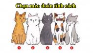 Chọn chú mèo mà bạn thích nhất sẽ bật mí những điều người khác đánh giá về bạn