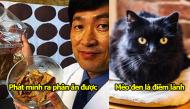 Những sự thật đặc biệt chỉ có thể thấy tại Nhật Bản khiến cả thế giới ngạc nhiên