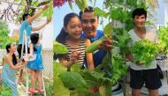 Mê mẩn trước những vườn rau sạch trong biệt thự triệu đô của sao Việt