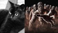 """Lý giải hiện tượng """"quỷ nhập tràng"""" - mèo nhảy qua khiến xác chết bật dậy"""