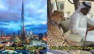 15 điều sai bét về cuộc sống xa xỉ ở Dubai mà cả thế giới đều tin sái cổ