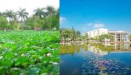 """Ấn tượng ngôi trường rộng nhất Việt Nam, có hẳn hồ sen mênh mông và vô số góc """"sống ảo"""""""