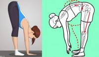 Bài tập đơn giản nhưng giúp cải thiện sức khỏe và kéo dài tuổi thọ rất tốt mà ít người biết
