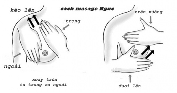 Image result for matxa đẩy ngực song song