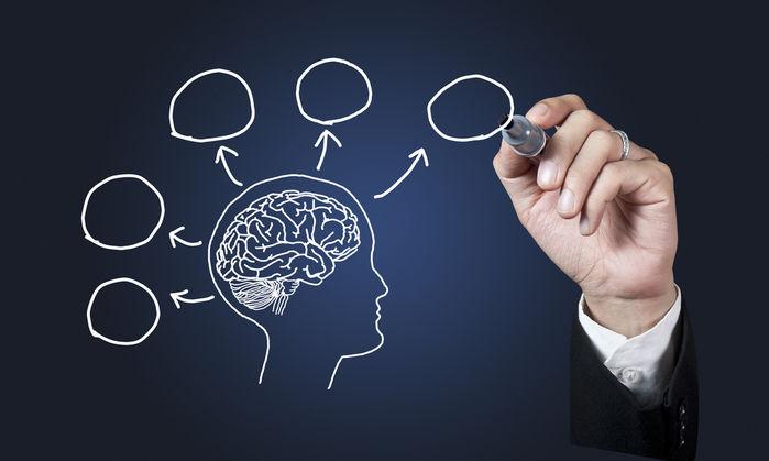 Những điều thú vị về bộ não con người mà có thể bạn chưa biết