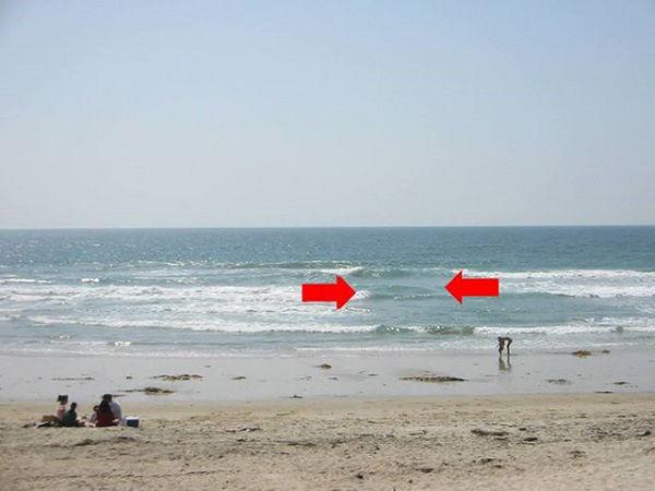 bestie đi biển nhìn thấy dấu hiệu này phải bỏ chạy thật xa trước khi quá muộn