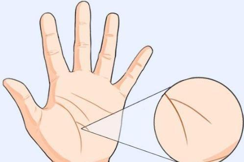 Nếu lòng bàn tay có những đường vân này, cuộc đời sẽ cực kỳ may mắn
