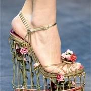 Giày phải là hàng độc, không đụng hàng