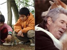 10 phim xuất sắc về động vật khiến khán giả phải rưng rưng nước mắt