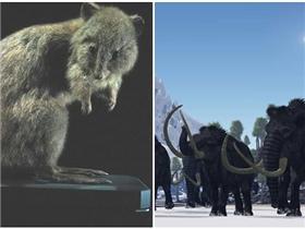 Những loài vật tuyệt chủng kỳ lạ nhất trong lịch sử tiến hóa