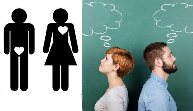 Sự khác nhau giữa đàn ông và phụ nữ trong cuộc sống khiến nhiều người thích thú