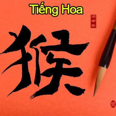 """Xếp hạng 10 ngôn ngữ """"khoai"""" nhất thế giới, tiếng Việt vẫn còn dễ chán thumbnail"""