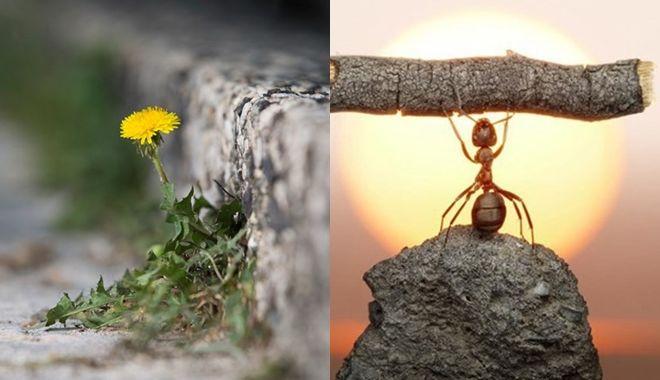 Những triết lí vàng trong cuộc sống khiến bạn bừng tỉnh ngay lập tức