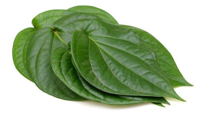 Mẹo hay giảm viêm lỗ chân lông cực nhanh mà dễ ợt với lá trầu không